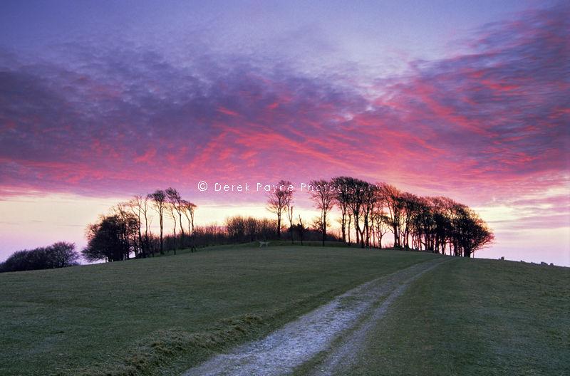 Chanctonbury Sunrise, Chanctonbury, West Sussex.