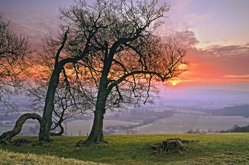 Sunrise on top of Chanctobury, West Sussex.