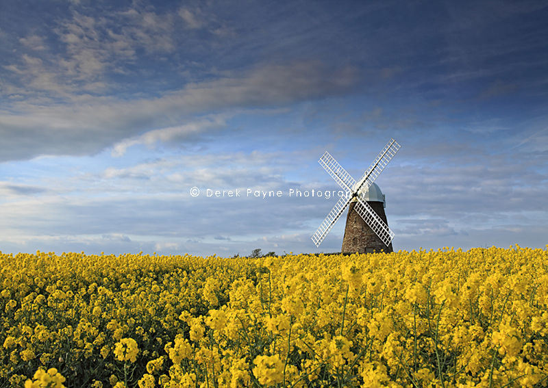 Halnaker Windmill, Halnaker, West Sussex