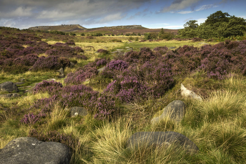 View of Stanage Edge From Heathersage Moor