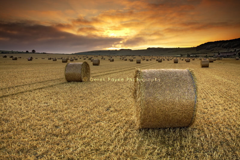 Sunrise over field of straw bales