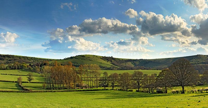 Sullington Meadows.