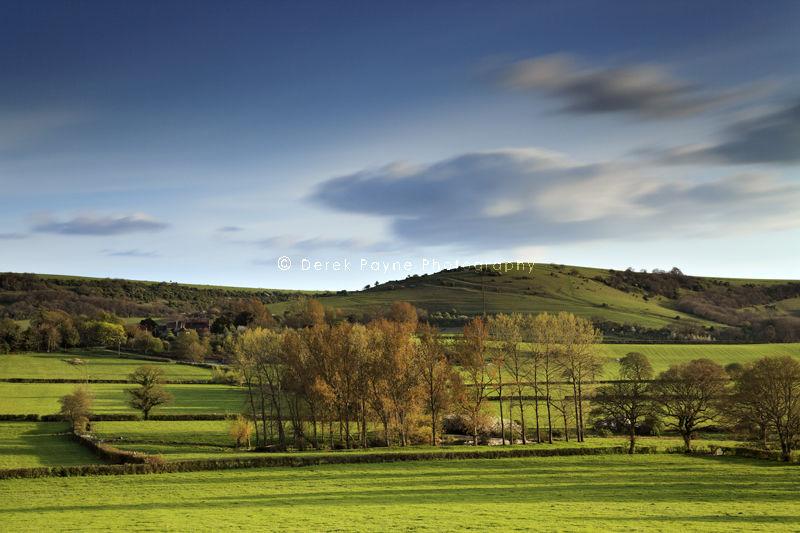 Sullington Hill.