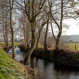 River Dore in Spring