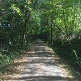 The Tarka Trail cyclepath.  Only 2 miles away and easy to cycle or walk to