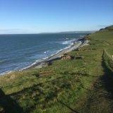 The coastal footpath between Westward Ho! and Bucks Mills