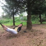 Relaxing under the pine trees !