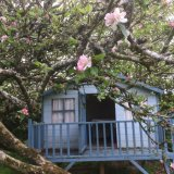 Tree house in the orchard