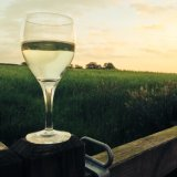 A glass of wine looking out over some of your private 20 acres
