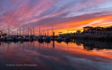 Torquay Harbour Sunset T115