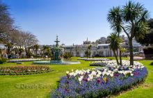 Princess Gardens, Torquay T79