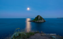 Thatcher Rock by Moonlight T 103