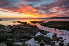 Saltern Cove, Paignton P19