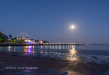 Torquay By Moonlight T168