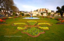 Princess Gardens T190