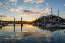 Harbour Sunset TW29