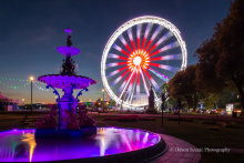 English Riviera Wheel and Fountain T176