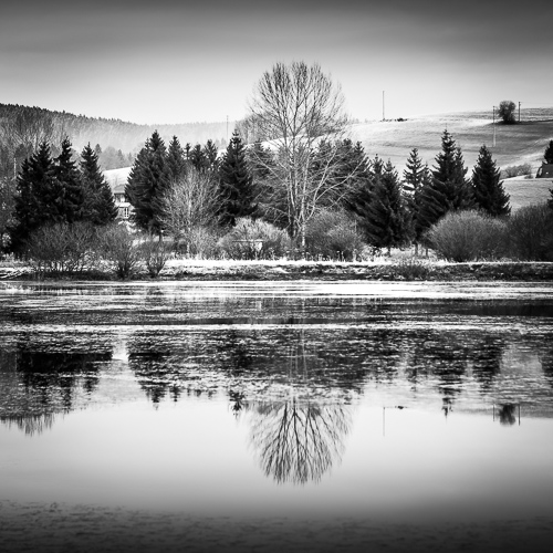 Reflections, Lac de Remoray, France 2013