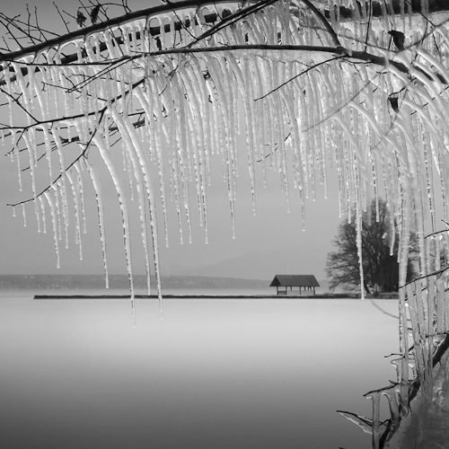 Icicles, Lac Léman near Rolle, Switzerland 2011