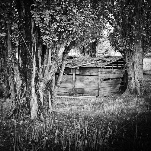 Shed and Trees, Préveranges