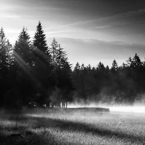 Mist I, L'Etang de la Gruère, Switzerland 2012