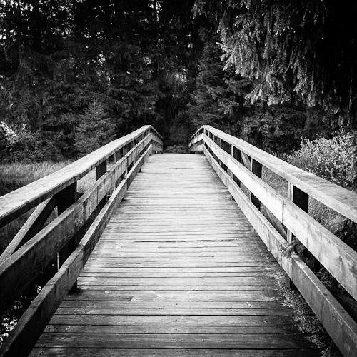 Wooden Bridge II, L'Etang de la Gruère, Switzerland 2012