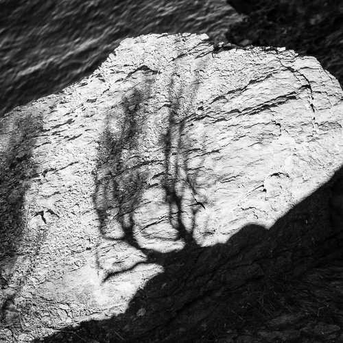 Tree-Shadow, Cala Montjoi, Spain 2013