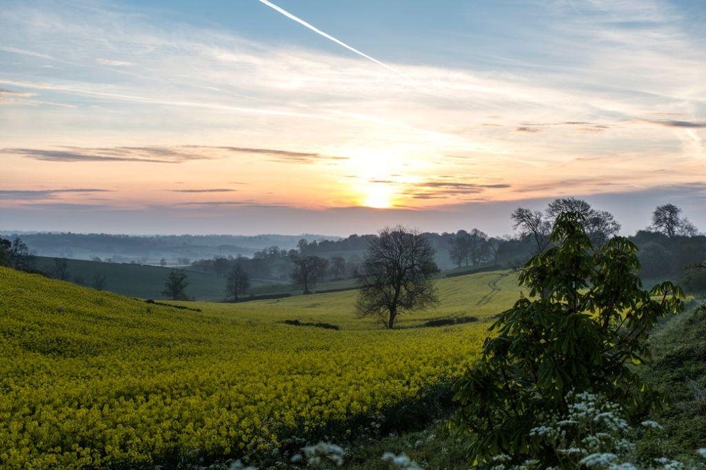 Spring Preston Sunrise