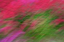 Valerian Blur - Dungeness