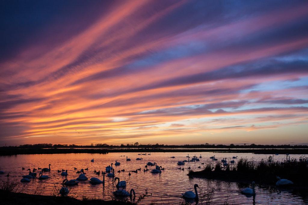 Welney Sunset