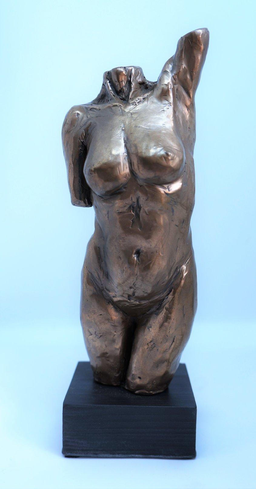 Torso, cold cast bronze, £55