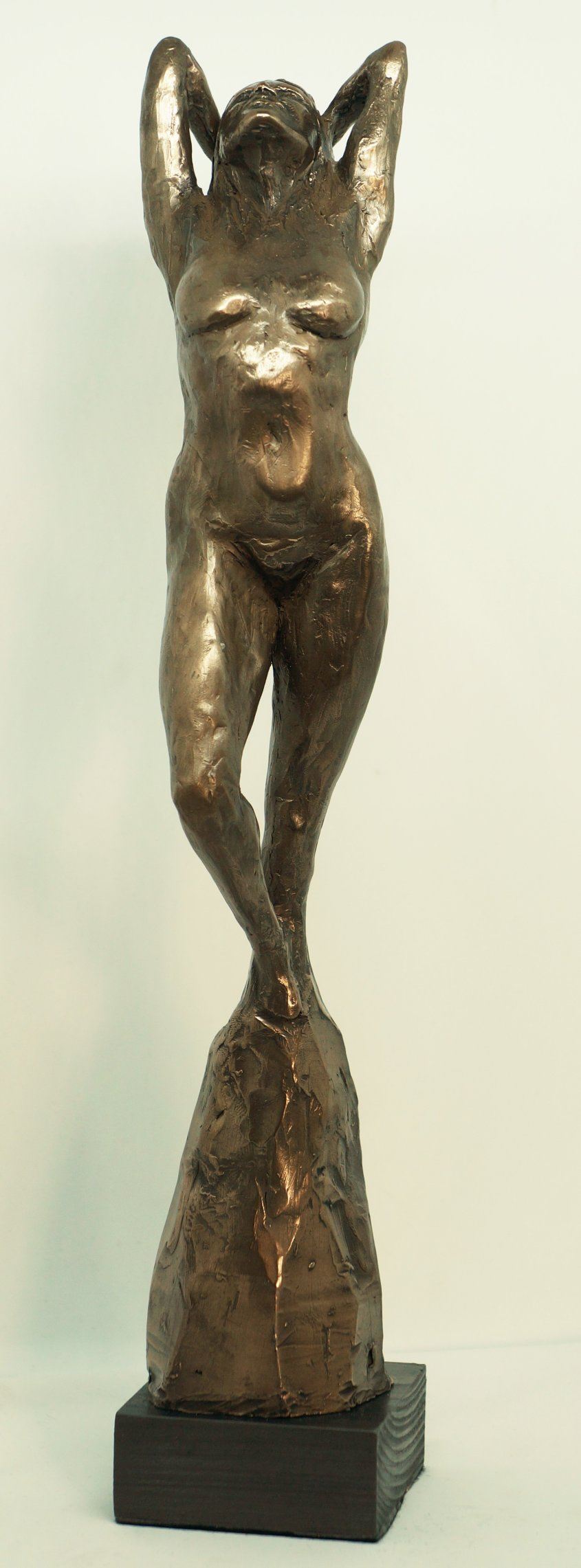 Aphrodite, cold cast bronze, 38cm tall - £95