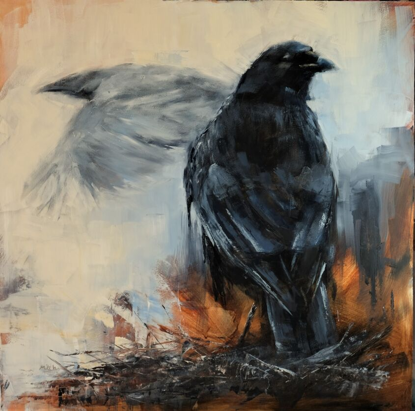 Corvids, oil on board, 60x60cm, - £350