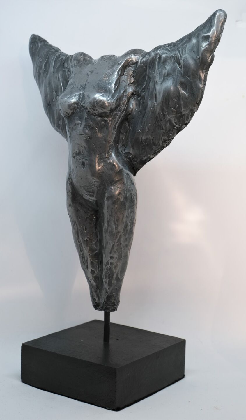 On Borrowed Wings, cold cast aluminium, approx 35cm - £100