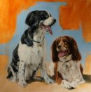Barney and Harry, oil on canvas 70x70cm, NFS - Commission piece