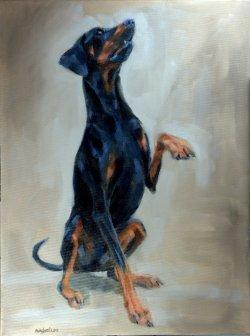 Rocky, oil on canvas, 60x80cm - NFS