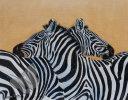 Zebras on Lookout