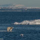 Arctic 2016 - Andy Barnes-10