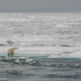 Arctic 2016 - Andy Barnes-14
