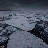 Arctic 2016 - Andy Barnes-17