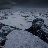 Arctic 2016 - Andy Barnes-18