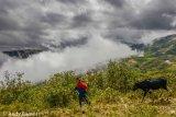Equador 2014 - Andy Barnes-14