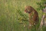 Kenya 2015 - Andy Barnes-77