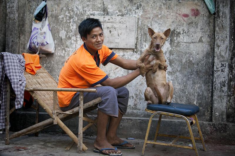 Dog IMG 8785 E