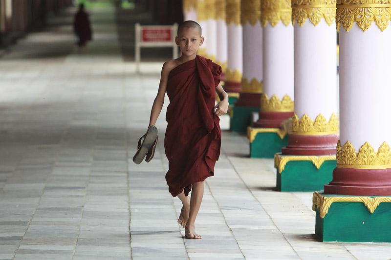Monk IMG 7443 E