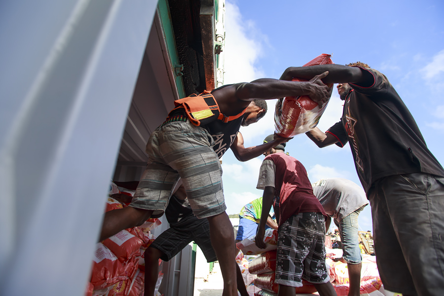 RedR Vanuatu 254A9948 E