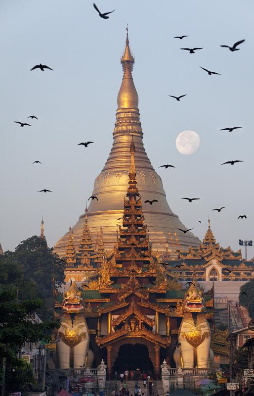 Shwedagon IMG 2010 E2