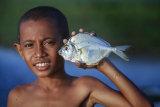 Timor Dili 254A3006
