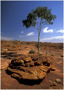 Kings Canyon-Australia