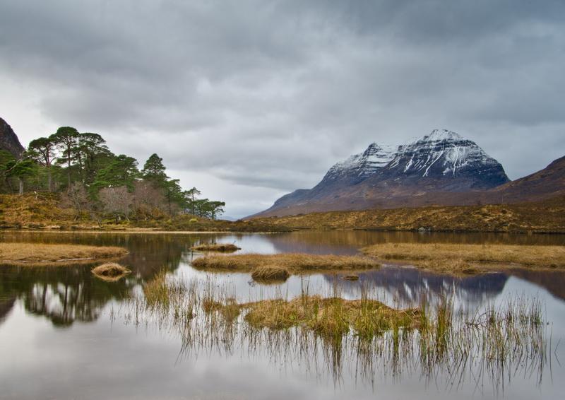 Loch Clair Laithach reeds